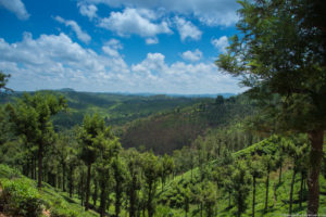Nilgiris Mango Range Vacation